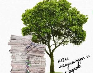 Экологическая акция «Сдай макулатуру – сохрани дерево!»